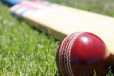 Five cricket apps you can download on your smartphone