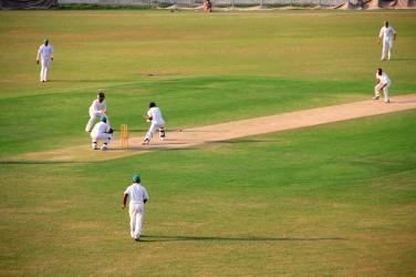 Cricket Test Match game